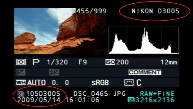 nikon d300s lcd screen leaked Nikon D300s LCD screen leaked?