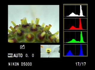 nikon-d5000-histogram-2