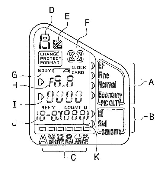 Odd LCD Screen Patent from Nikon