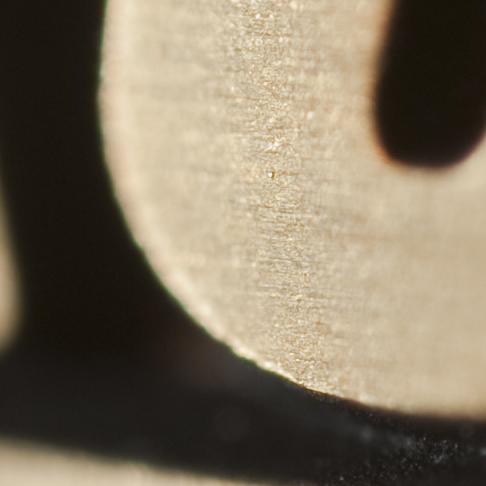 Nikkor 19mm f/2.8 Macro lens at f/2 (100% crop)