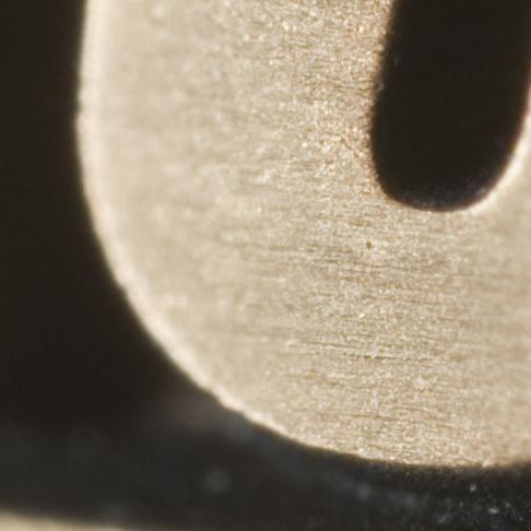 Nikkor 19mm f/2.8 Macro lens at f/4 (100% crop)