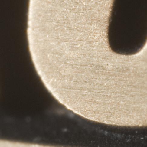 Nikkor 19mm f/2.8 Macro lens at f/5 (100% crop)