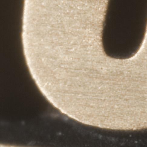 Nikkor 19mm f/2.8 Macro lens at f/6 (100% crop)