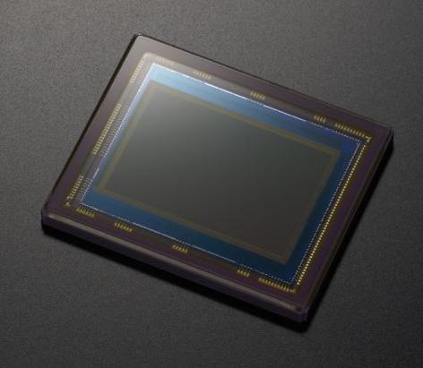 The current Sony a700 12.24MP Exmor APS-C CMOS sensor