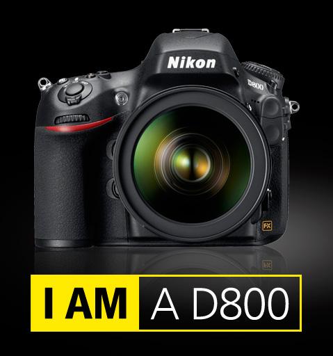 http://nikonrumors.com/wp-content/uploads/2012/02/I-am-Nikon-D800.jpg