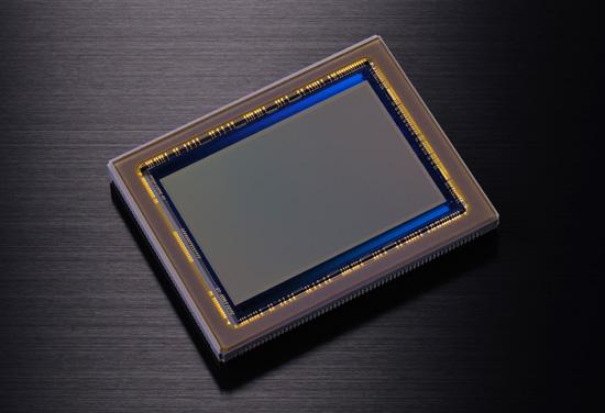 Nikon D800 36.3MP CMOS sensor