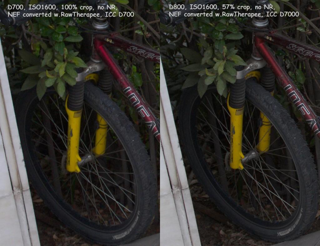 D700 D800 01600 comp 1024x789 Another Nikon D700 vs. Nikon D800 high ISO comparison