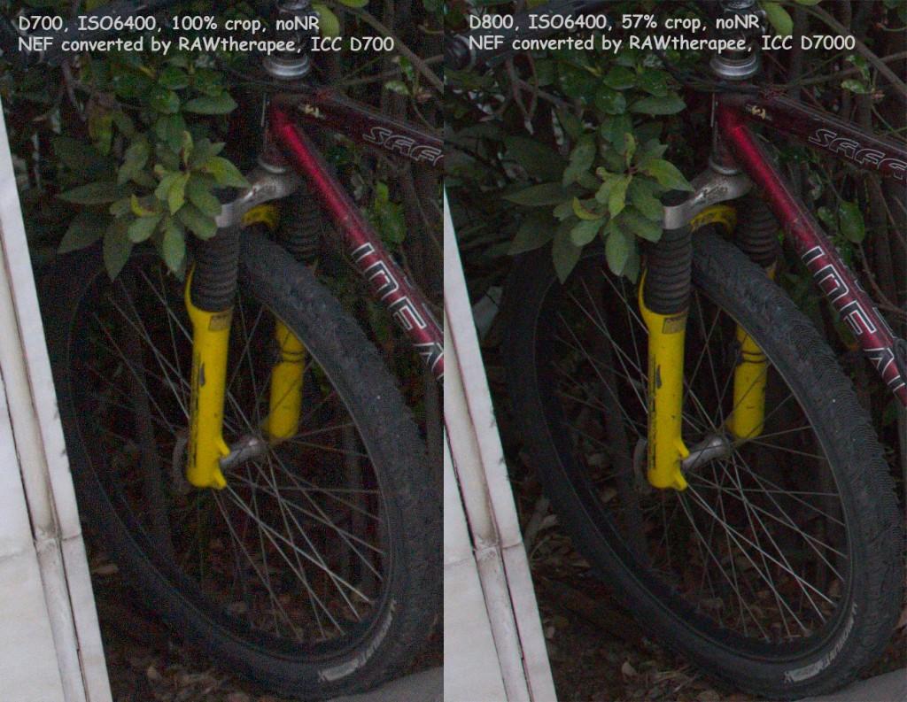 D700 D800 06400 comp 1024x793 Another Nikon D700 vs. Nikon D800 high ISO comparison
