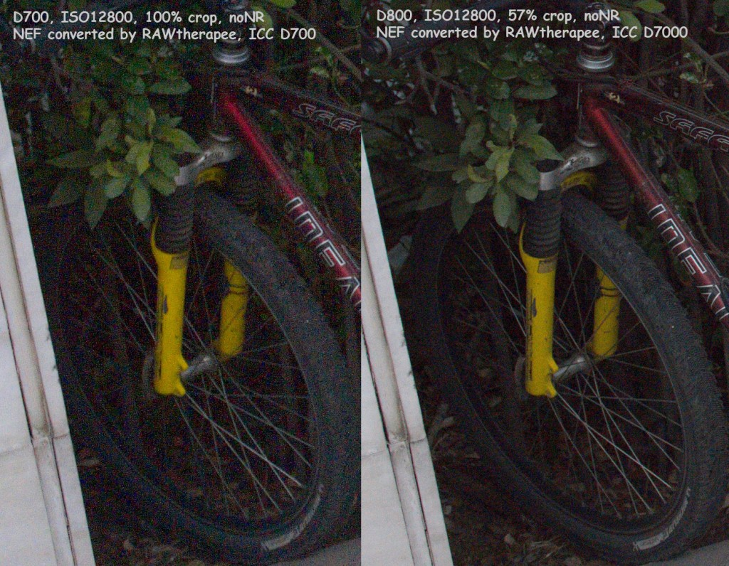 D700 D800 12800 comp 1024x796 Another Nikon D700 vs. Nikon D800 high ISO comparison