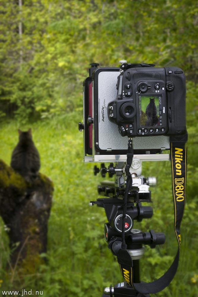 Guest post: Large format photography with Nikon D800 as a ...