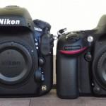 Nikon D800 vs D600 1