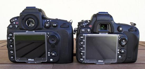 Nikon D800 vs D600 3 Nikon D600 vs. D800E high ISO samples