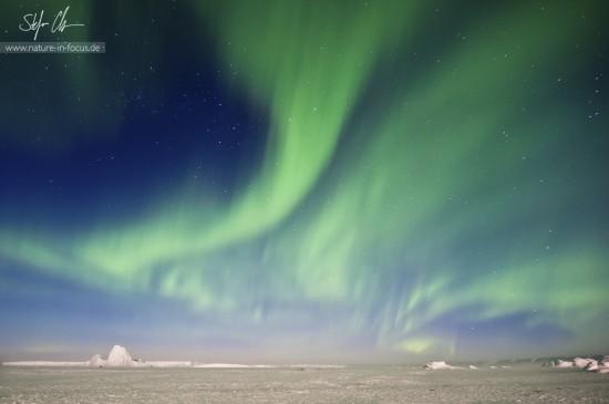 My year in Antarctica 13