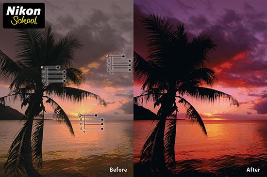 Nikon-Capture-NX2-online-course