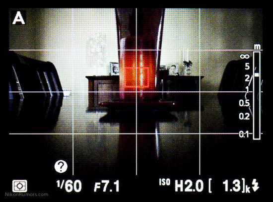 Nikon Coolpix A framing grid