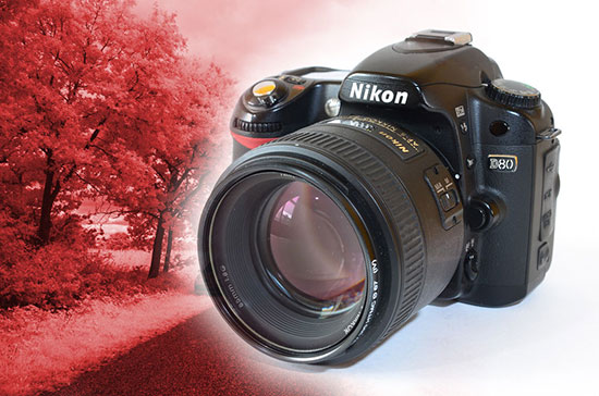 Nikon-D80-camera-Infrared-Conversion