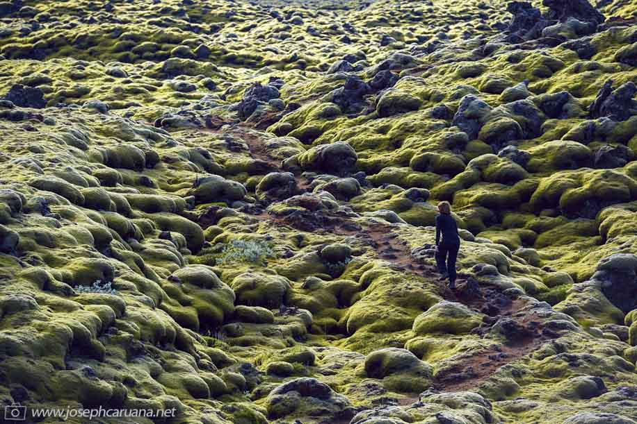 Nikon D800E does Iceland 12