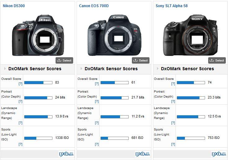 Nikon D5300 DxOMark review