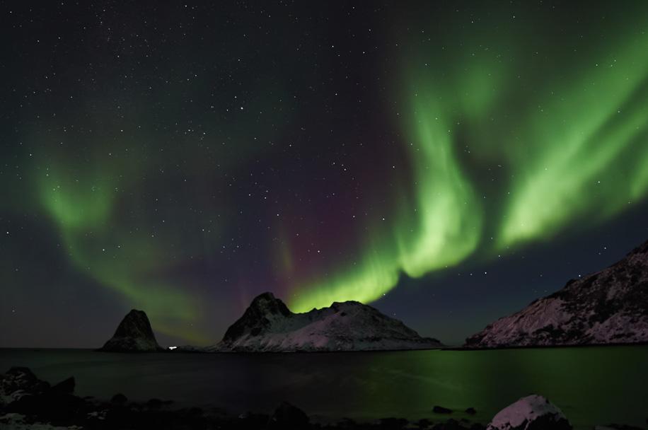 aurora3ianrobins