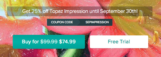 Topaz-Impression-coupon-discount-sale