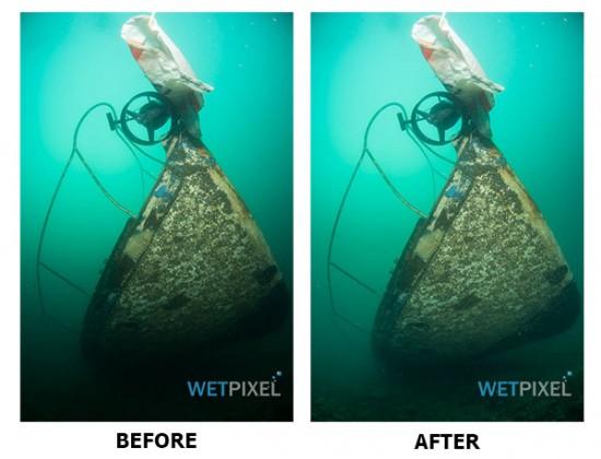 Nikon D810 underwater review_14