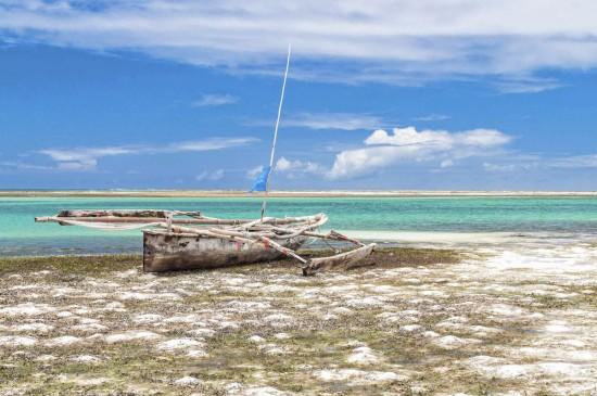 Zanzibar with the Nikon D5000 3
