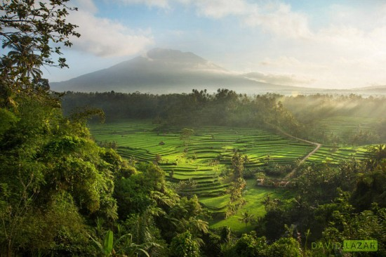 David-Lazar_Hidden-Bali-Rice-Terraces_Luminous-Journeys