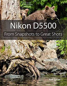 Nikon-D5500--From-Snapshots-to-Great-Shots