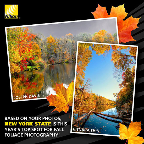 Nikon-names-2015-top-state-for-photographing-fall-foliage