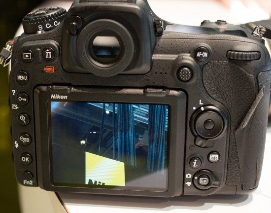 Nikon D500 ISO 25,600 100% crop