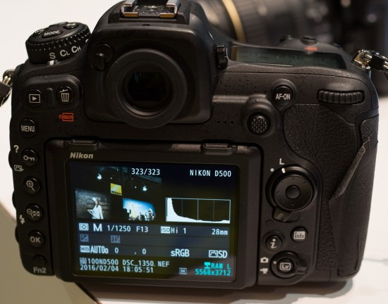 Nikon D500 ISO Hi1 info screen