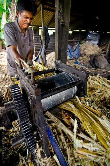 I love his facial expression. Delicious. Shot at a backyard cane sugar factory in central Sumatra.