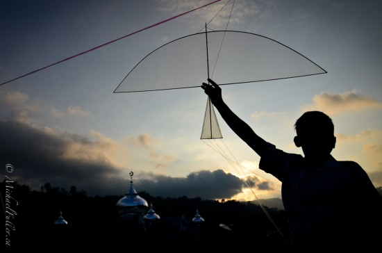 Kites, Bubbles, and Buffalo Races in Sumatra22
