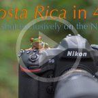 Nikon-D5-DSLR-camera-Costa-Rica-wildlife-video-in-4K