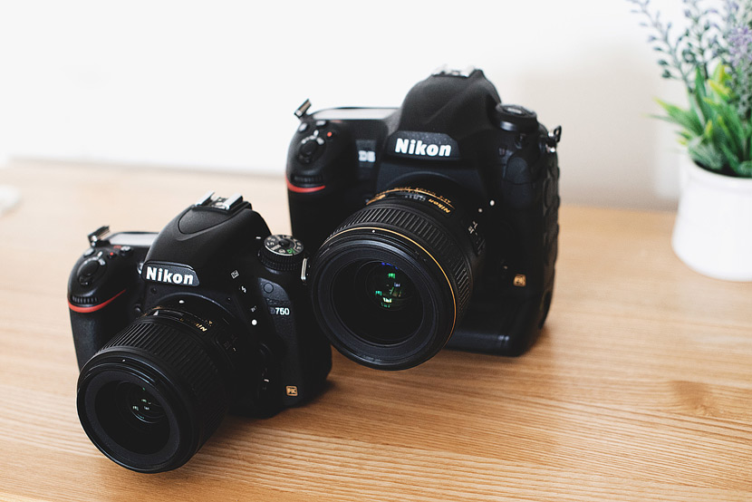 The Best Nikon DSLR Cameras of 2019 - Reviewed Cameras