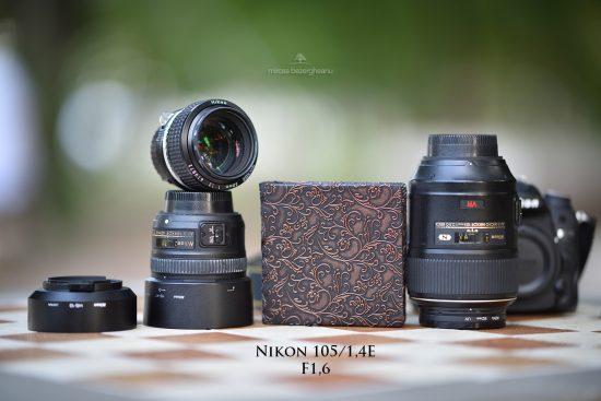 nikon-105_14e-la-16-13