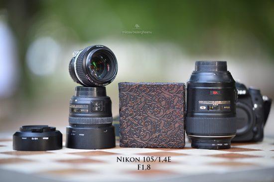 nikon-105_14e-la-18-13