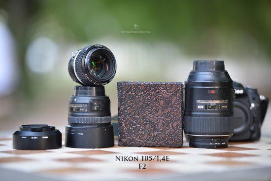 nikon-105_14e-la-20-13