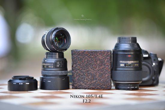 nikon-105_14e-la-22-13