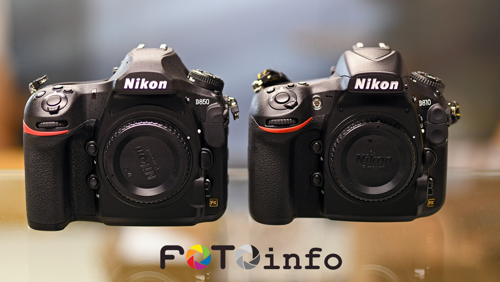 First Nikon D850 vs  D810 high ISO comparison published online