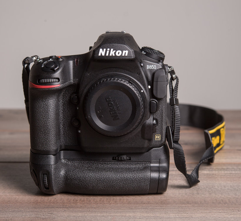 Nikon D850: sample photos, best memory cards, how to open