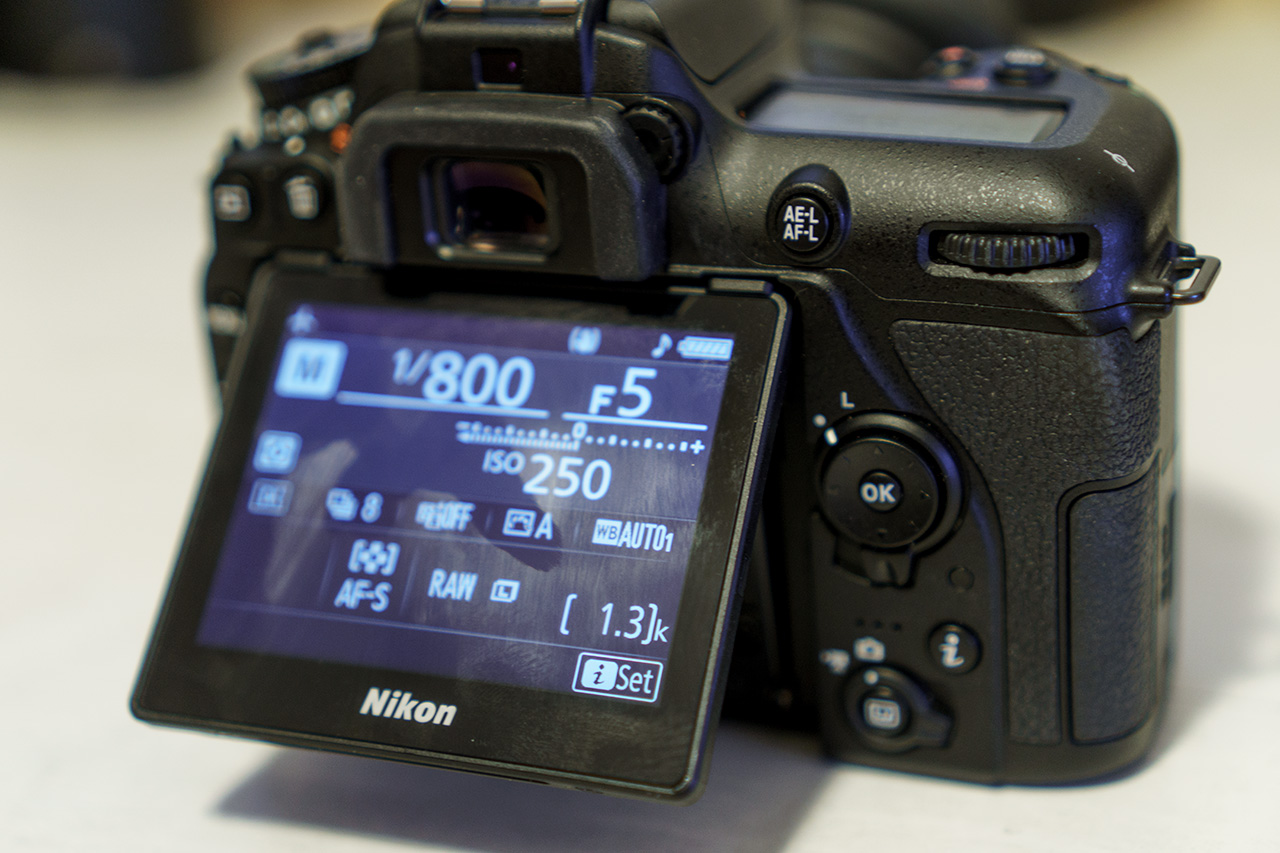 Nikon Cameras: Digital Photography Review