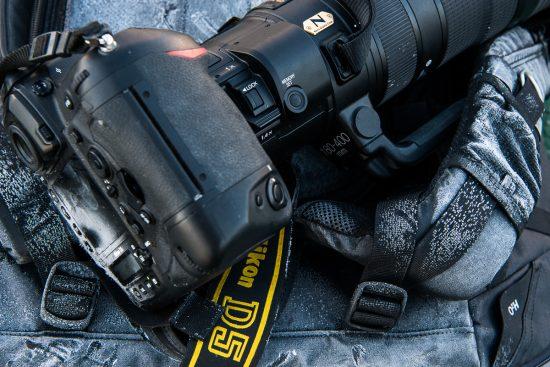 Nikkor AF-S 180-400mm f/4 ED TC VR lens field test report by Roy Mangersnes