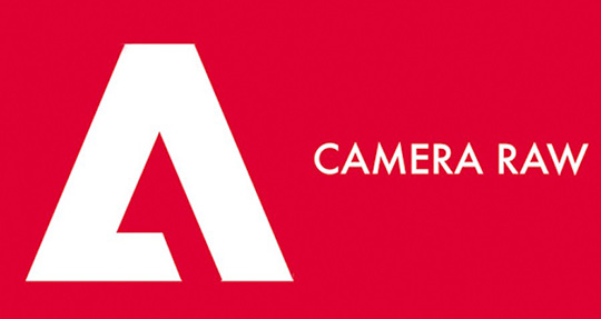 Adobe Camera Raw now supports Nikon Z7 and P1000 cameras
