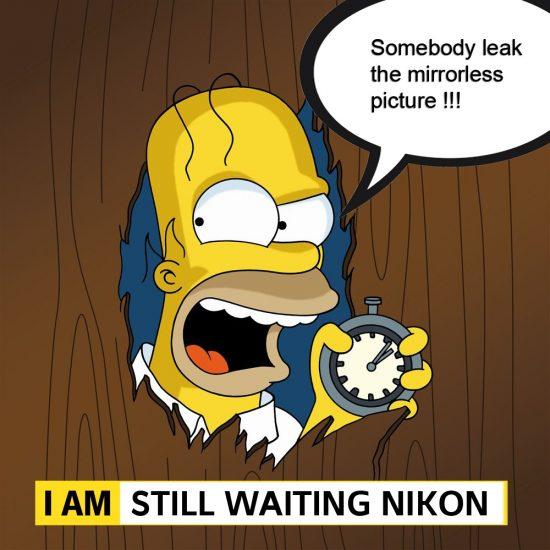 Nikon-mirrorless-camera-leak-550x550.jpg
