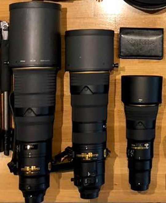 Roie Galiz on shooting with the new Nikon 500mm f/5 6E PF ED VR lens