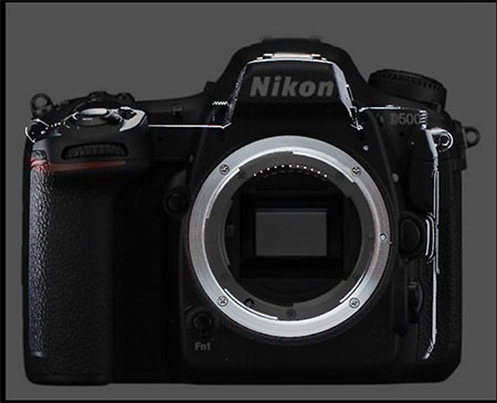 Nikon mirrorless camera compared with D500 © Issy Nomura