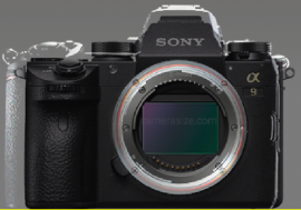 Nikon mirrorless camera compared with Sony a9 © Drororomon