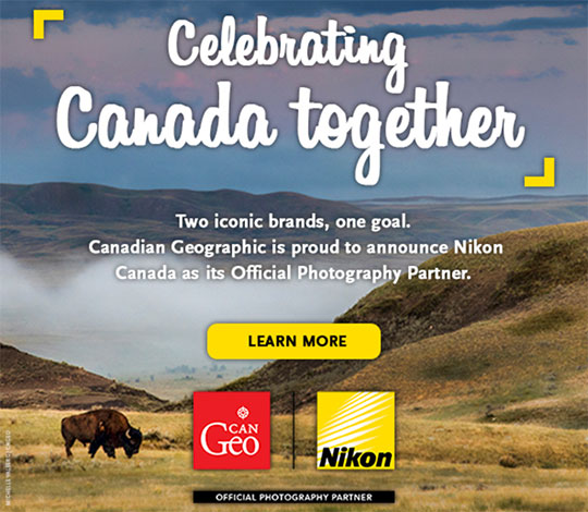 Weekly Nikon news flash #525 - Nikon Rumors