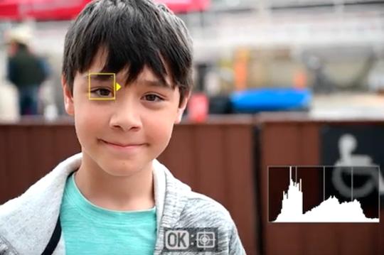 DPReview TV: Nikon Z6 and Z7 eye-autofocus tested - Nikon Rumors
